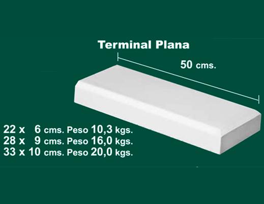 Terminal-Plana