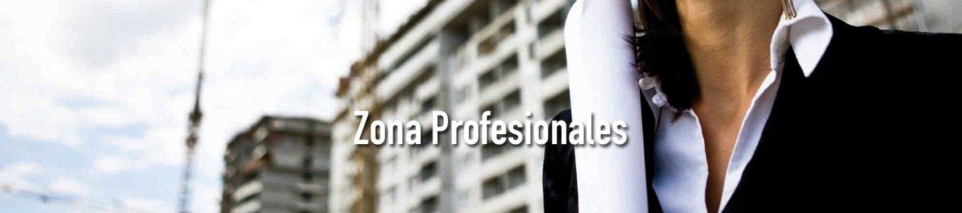 seccion profesionales
