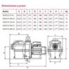 Bomba Piscina Espa Silen-S2 Características